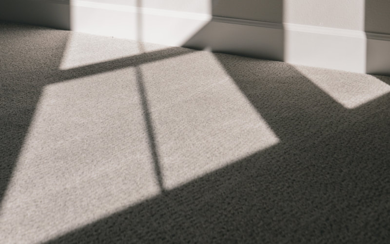 winter carpet care tips